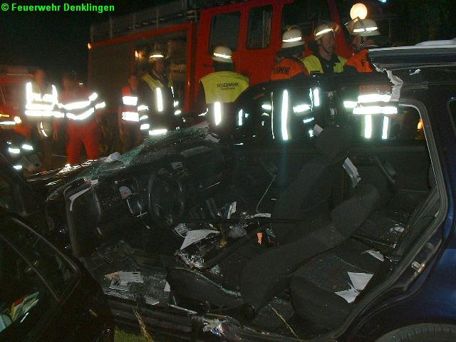 (c) Feuerwehr Denklingen: 28.06.07 - 22:02 Uhr - VU, PKW gegen Pferd