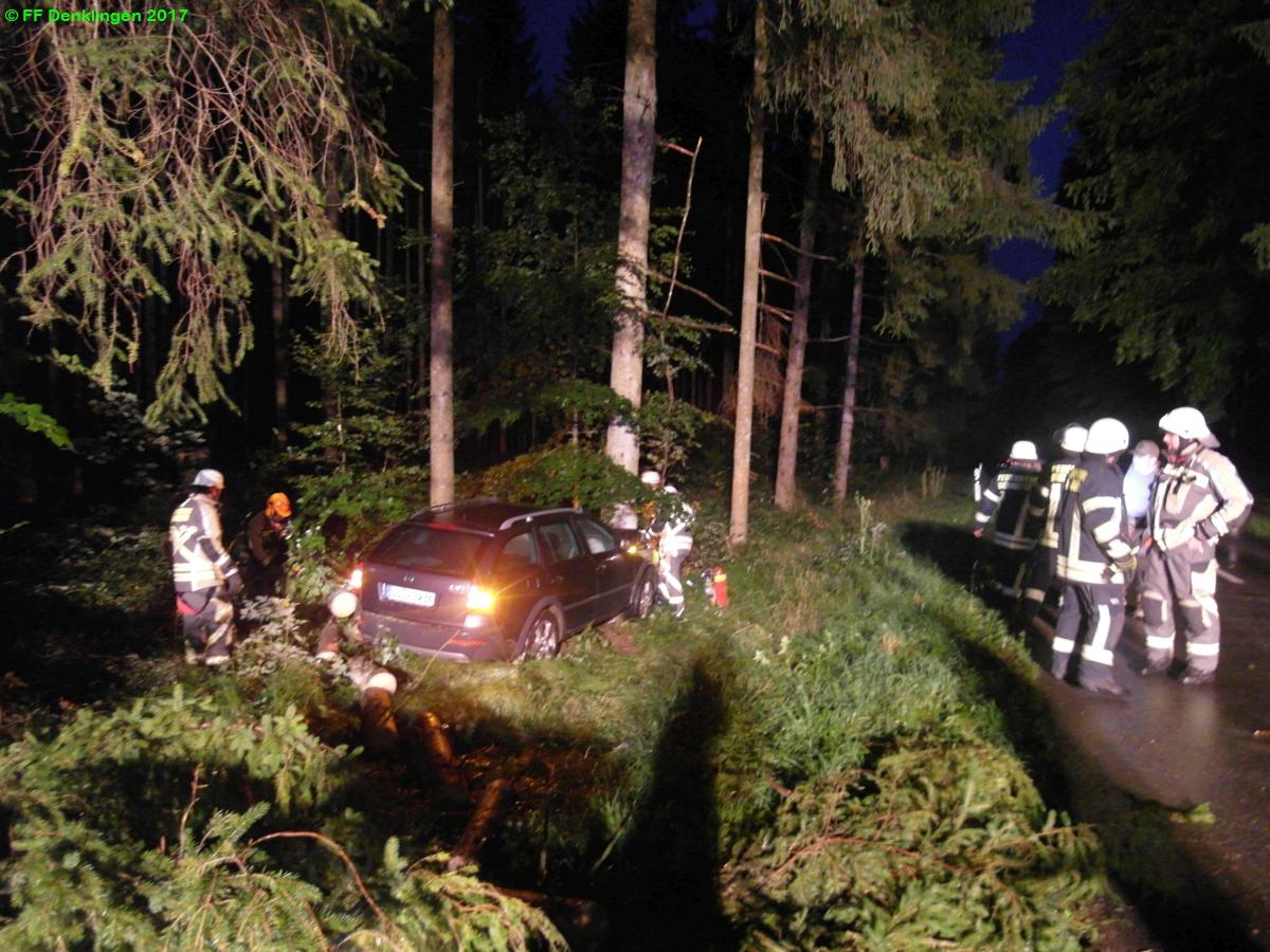 (c) Feuerwehr Denklingen: 24.08.2017 - 20:39 Uhr - Baum über Straße, Dienhausen