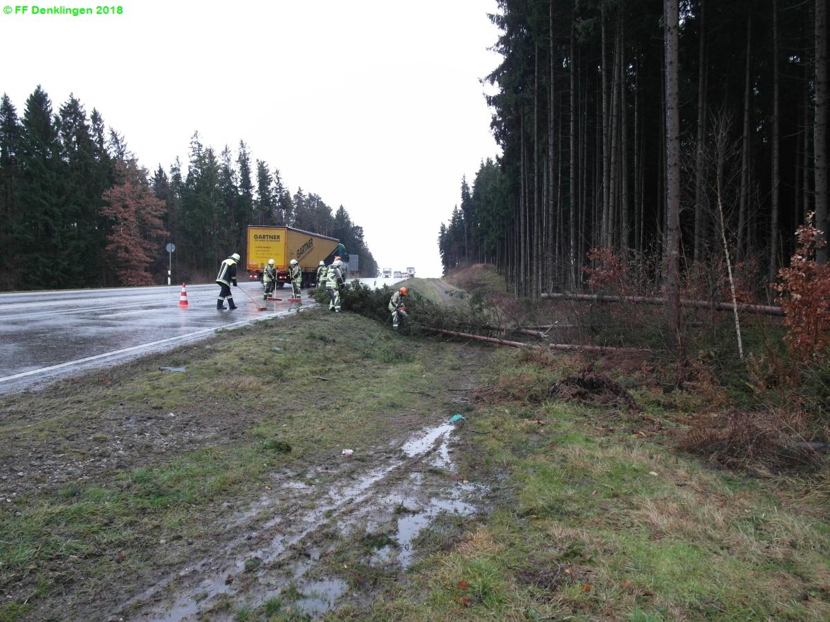 (c) Feuerwehr Denklingen: 03.01.2018 - 13:14 Uhr - Baum über Straße, Denklingen