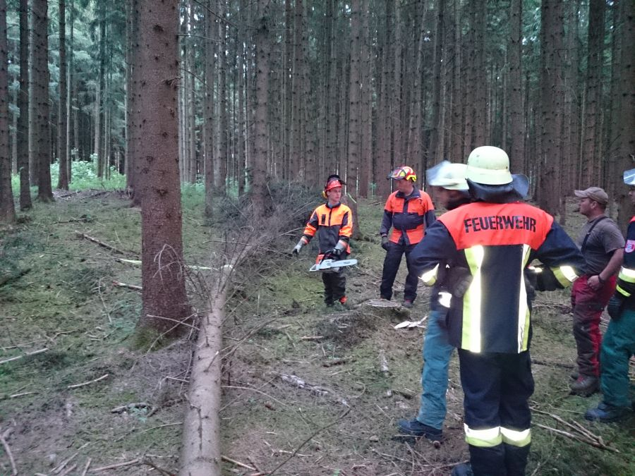 (c) Feuerwehr Denklingen: 16.06.14 - Umgang mit der Motorsäge